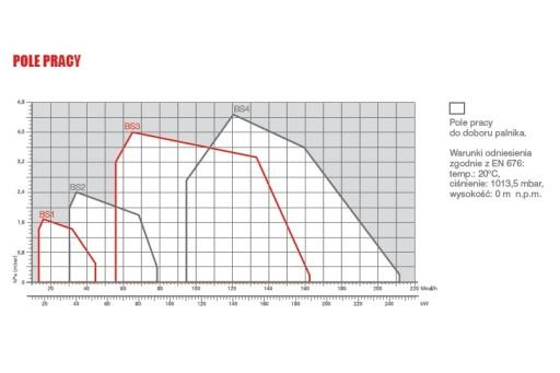 """Palnik gazowy jednostopniowy ze ścieżką 1/2"""" Riello BS1 - 52 kW"""